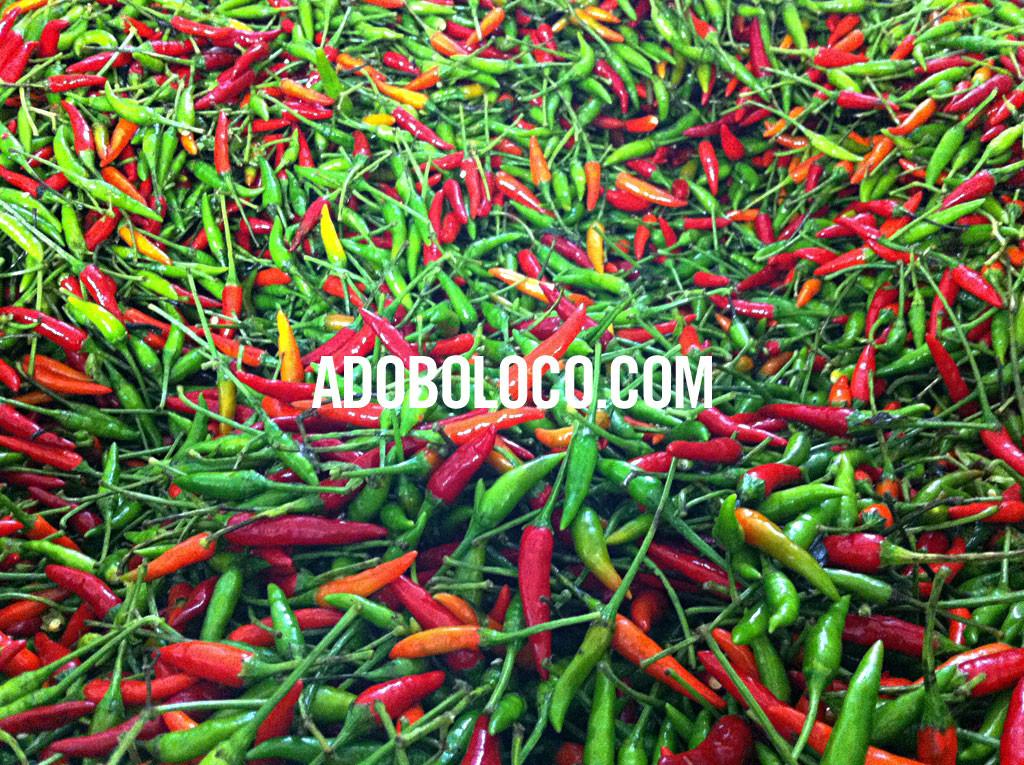 bangkok-thai-chili-paste-RED-GREEN